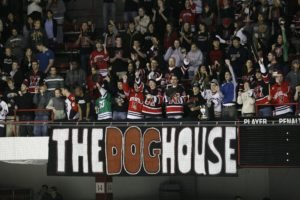 DogHouse t-shirt contest aims to promote school spirit