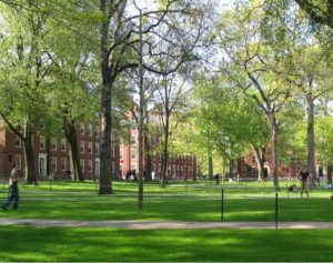 Harvard students stage divestment sit in