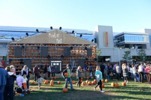 Festival fuels fall creativity