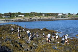 Citizens and students search for biodiversity