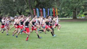 Cross Country Opens Season in Boston and Charlottesville