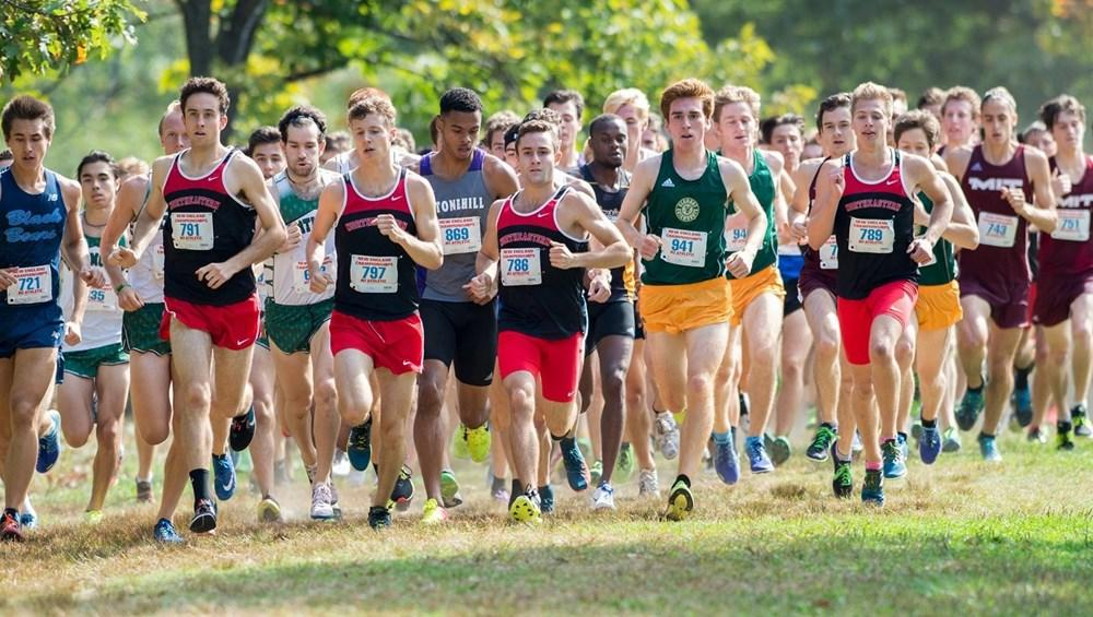 Northeastern mens cross country team leads the pack at a previous season meet.