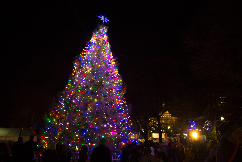 Boston Christmas Lights.Boston And Nova Scotia Continue Christmas Tree Tradition