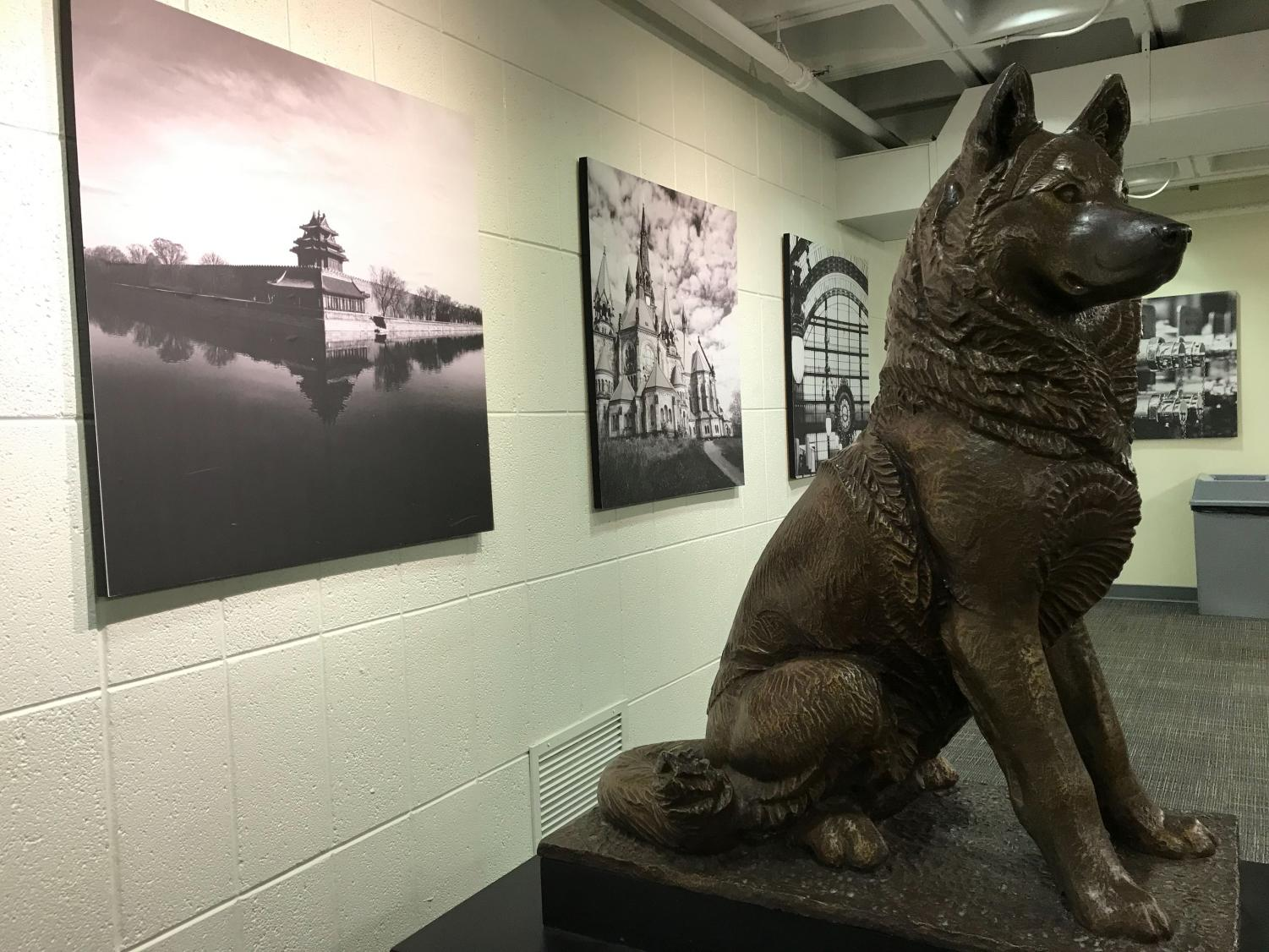 This husky statue sits outside the SGA office in Curry, where the Senate voted on the proposed referenda.