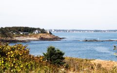 """Nahant Bay is designated as an """"important bird area"""" by Mass Audubon and is a valuable habitat for lobster, flounder and other species of aquatic life, according to a report by the Massachusetts Environmental Policy Act Office."""