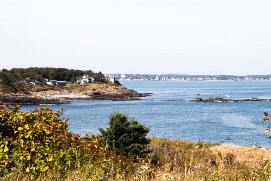 "Nahant Bay is designated as an ""important bird area"" by Mass Audubon and is a valuable habitat for lobster, flounder and other species of aquatic life, according to a report by the Massachusetts Environmental Policy Act Office."