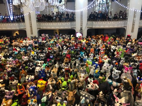 "Anthrocon convention drew lots of ""fursonas."""