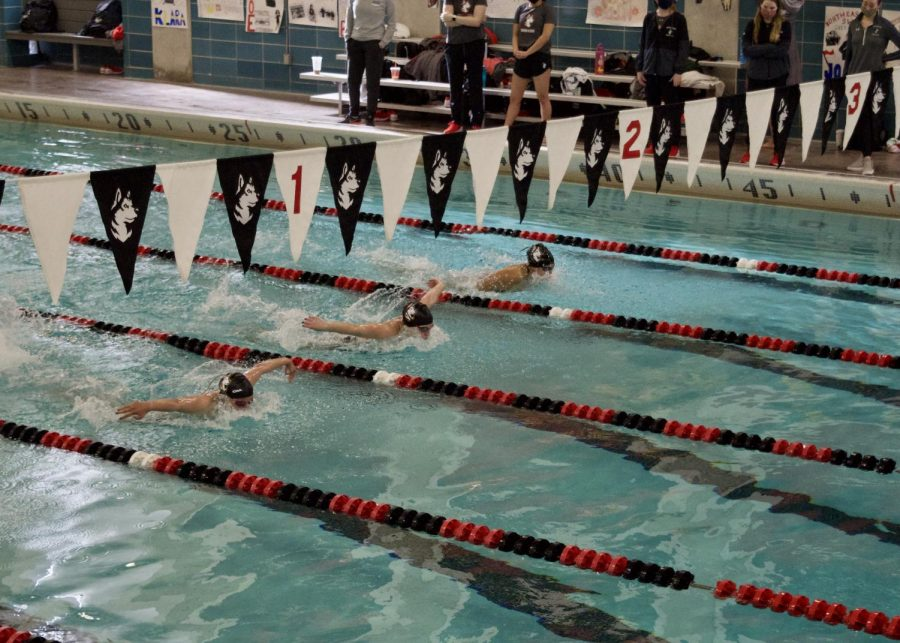 NU women's swimming and diving team compete in intrasquad virtual invitational and hold senior recognition.