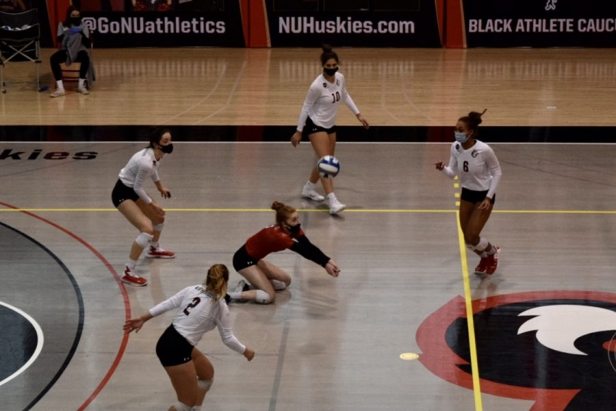 The+women%27s+volleyball+team+will+head+into+their+regular+season%2C+playing+first+against+rival+Hofstra.+