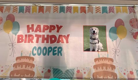 Northeastern celebrated its resident community resource dogs first birthday Oct. 18. The dogs name is Cooper.